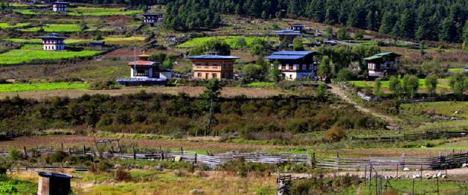 If you wish to experience Bhutanese culture and tradition any time of the year then a tailor made Bhutan cultural trip is meant for you. The drive through the undulating landscape takes you to the central Bhutan where you will experience ancient fortresses, monasteries, and temples.