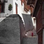 Bhutan festival tour,photography trip to Bhutan